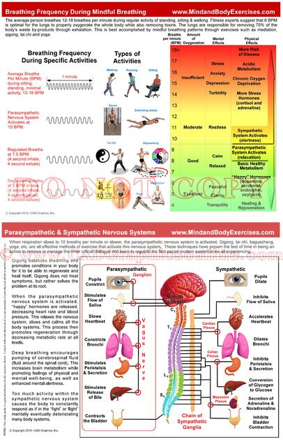 Breathing Frequency During Mindful Breathing
